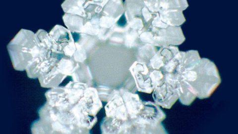 Výzkum: Tvary krystalů vody se mění podle toho, jak kní lidé mluví