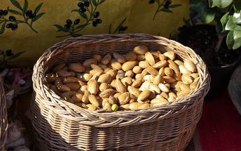mandle - plody mandlovníku