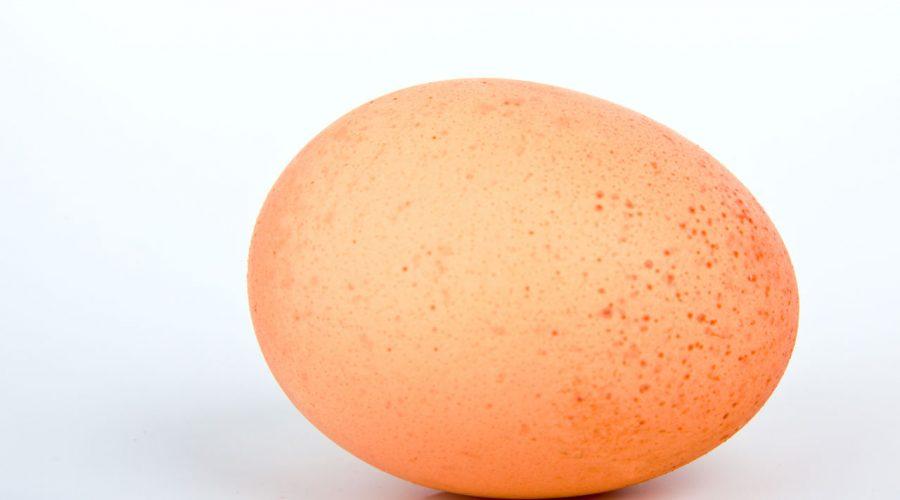 Jak ke slepici a jejímu vajíčku s úctou. (Volné dílo)
