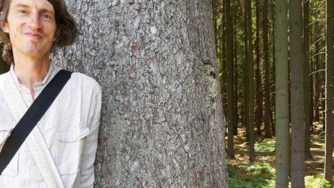 Hovory olese nejen slesníky: Jak se ztrácí voda zlesů vobdobí sucha? (2.díl)