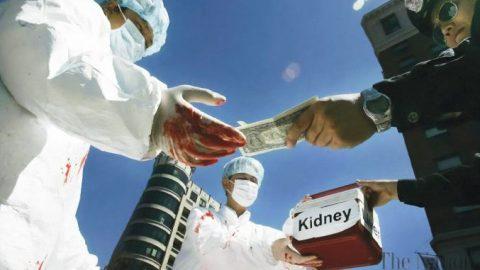 Archiv článků: Nelegální transplantace