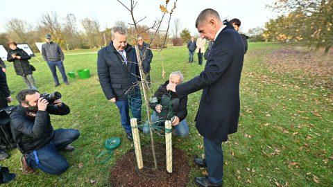 Premiér sministrem životního prostředí sázeli stromy