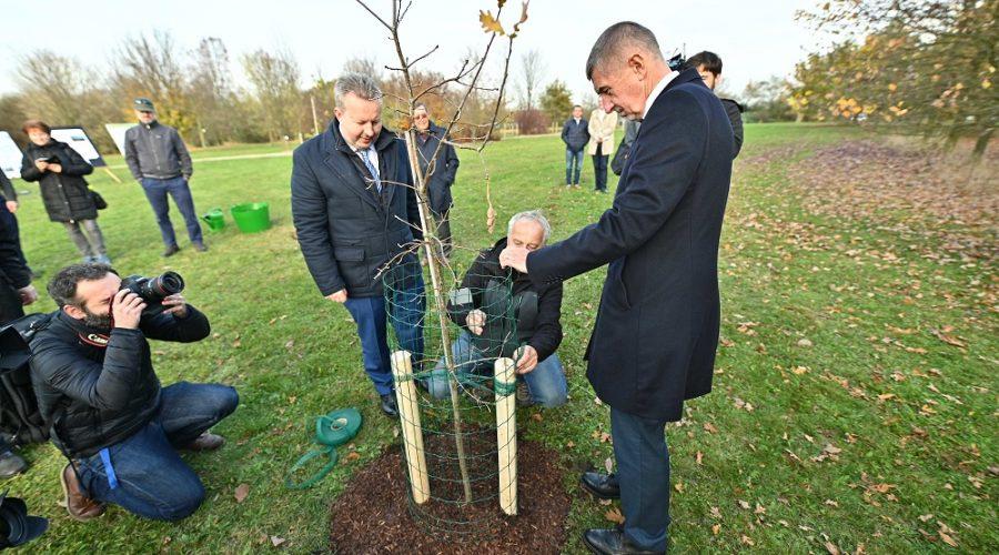 Premiér a ministr v Průhonicích otevřeli Stezku sucha, která pomáhá najít správné stromy do vyprahlých měst, Praha 31. října 2019. (Vlada.cz)