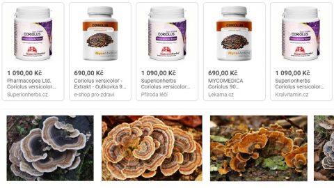 Kdo aproč zakázal vČR prodávat doplňky stravy zoutkovky pestré (Coriolus)?