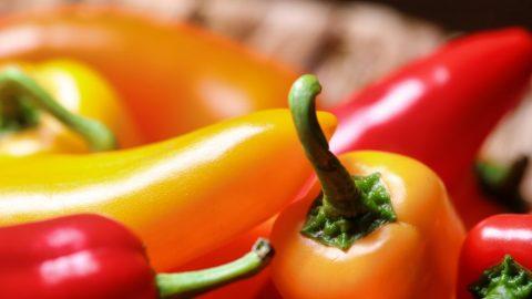 Paprika – bohatý zdroj vitaminu C