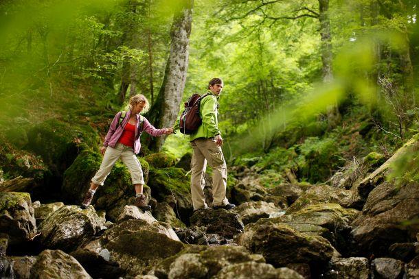 Chůze přírodou má vynikající účinky. (Turistika v Bavorsku, Bayern / germany.travel)