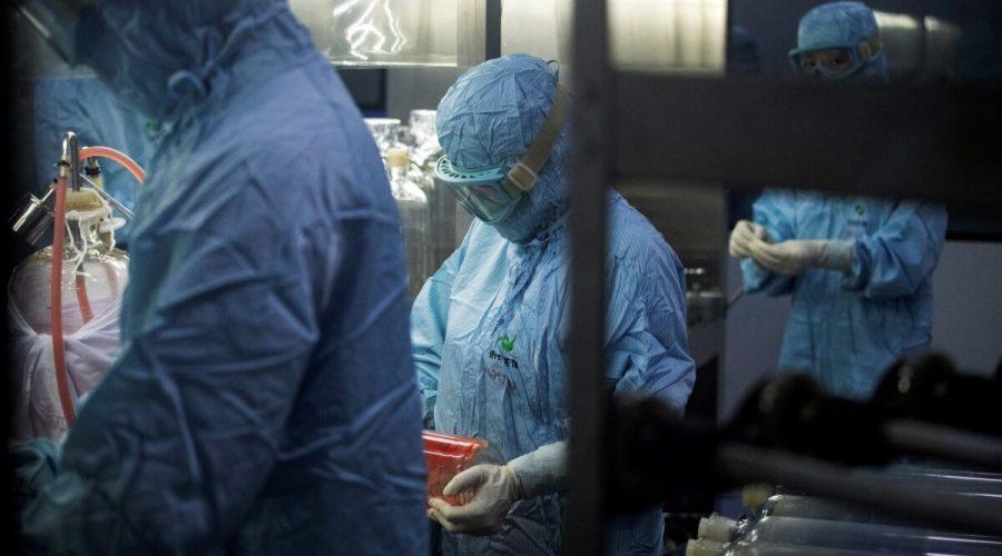 Vědci v ochranných oblecích pracují v biofarmaceutické laboratoři ve městě Šen-jang v provincii Liao-ning, Čína 9. června 2020. (NOEL CELIS / AFP prostřednictvím Getty Images