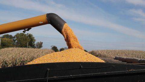 Obří povodně nutí Čínu kupovat americké zemědělské produkty