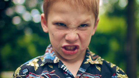 Proč se vynořuje hněv, jak ho zkrotit aproč není žádoucí