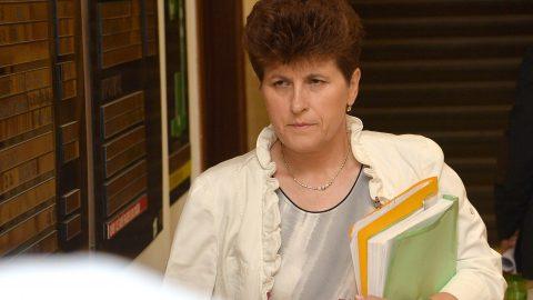 Soudkyně Gilová rozhodla. Znalecké posudky zpochybňující závěry Dr. Vorla posoudí Dr. Vorel