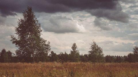 Letošní počasí – téma hodnocené odborníky: Přívalové deště, nárazový vítr