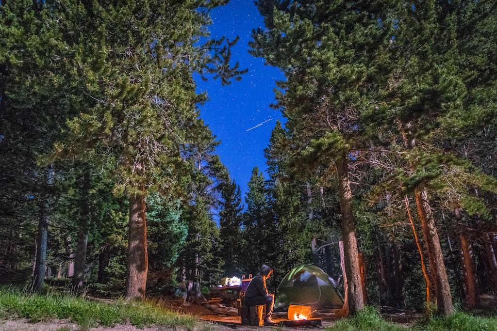 příroda les noc