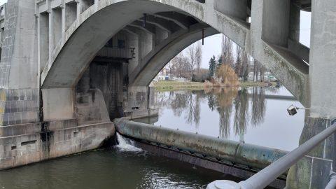 Projekt kanálu Dunaj-Odra-Labe porušuje Ramsarskou úmluvu, říkají Zelení