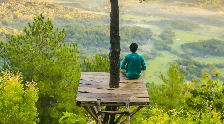 Trávit čas sám v přírodě je dobré pro duševní i emocionální zdraví. (Samuel Silitonga / Pexels)