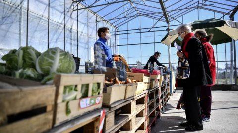 Farmářské trhy se ovíkendu otevírají za přísných opatření