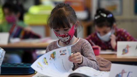 Německo: Soud zakázal povinné nošení masek, rozestupy atestování žáků ve školách (podrobné zdůvodnění)