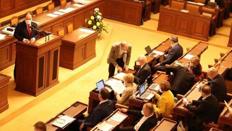 Jak hlasovali poslanci: Pro ústavní definici tradičního manželství nebo pro změnu jeho významu asňatky homosexuálů