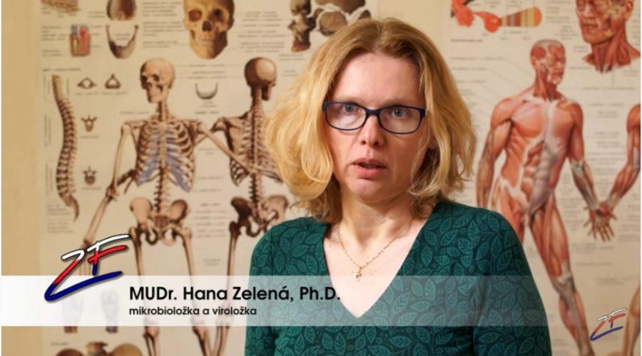 Reportáž - Imunita vs. očkování - názory lékařů. (Screenshot / YouTube)