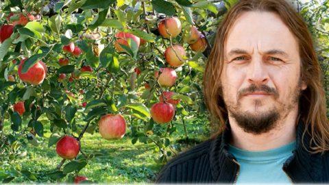 Radim Lokoč: Vedle možnosti koupit si ovoce je důležité neztratit dovednost si jej vypěstovat