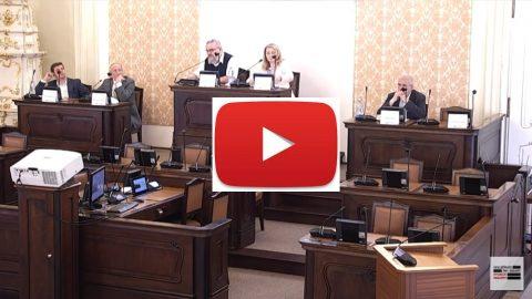 Svoboda projevu na sociálních sítích: Seminář vPoslanecké sněmovně (videozáznam)
