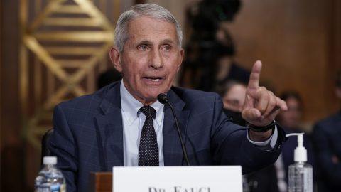Fauci zůstává ve funkci. Bílý dům podpořil jeho tvrzení ohledně kontroverzního výzkumu koronavirů ve Wu-chanu