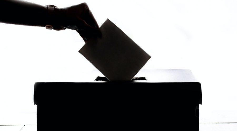 Jak je zabezpečený proces sčítání hlasů během voleb ČR proti volebním podvodům. (Element5 Digital / Pexels)