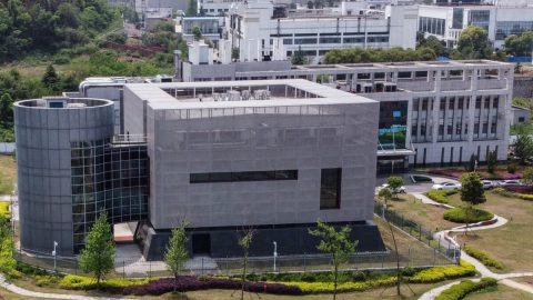 Report: Prodej PCR testů ve Wu-chanu prudce vzrostl ještě před zveřejněním prvního oficiálního případu covidu-19