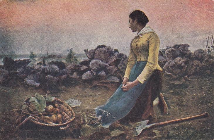 obraz zena pole